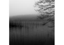 vinterdisig sjö III